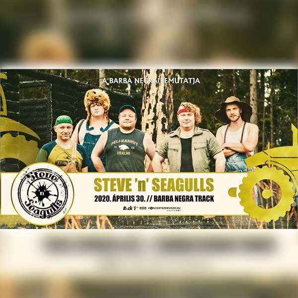 STEVE 'n' SEAGULLS